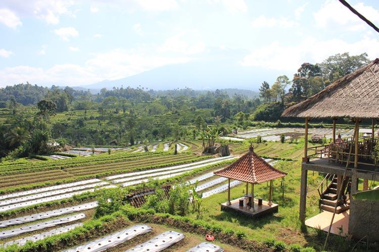 Voir-a-Bali-Ciaotutti