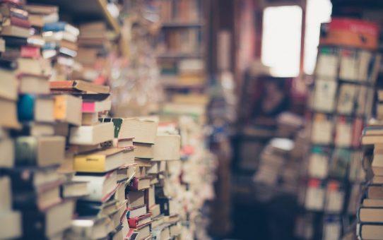 Les meilleurs livres de voyage