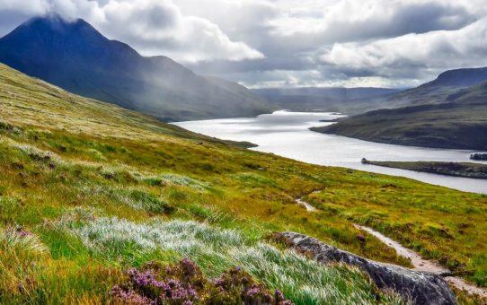 Parc national des Cairngorms : une grande dose de nature !